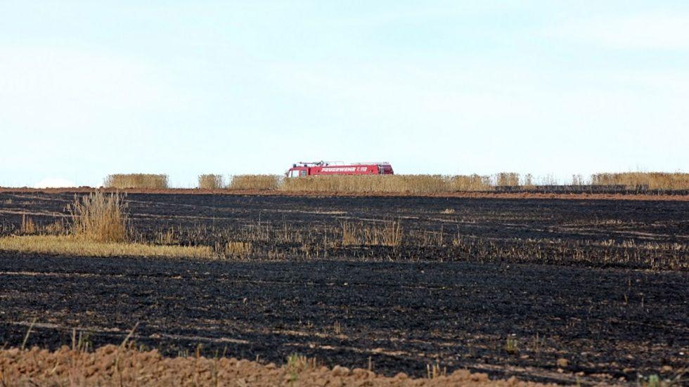 Gut 5.000 Quadratmeter Getreidefeld wurden vom Feuer zerstört.