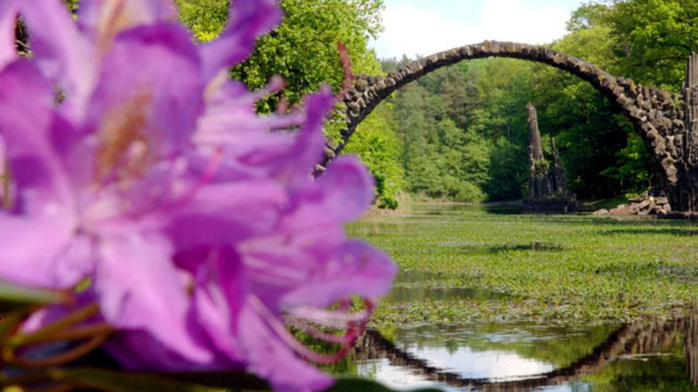 Azaleen- und Rhododendronpark Kromlau im Landkeis Görlitz (Archivfoto: dpa)