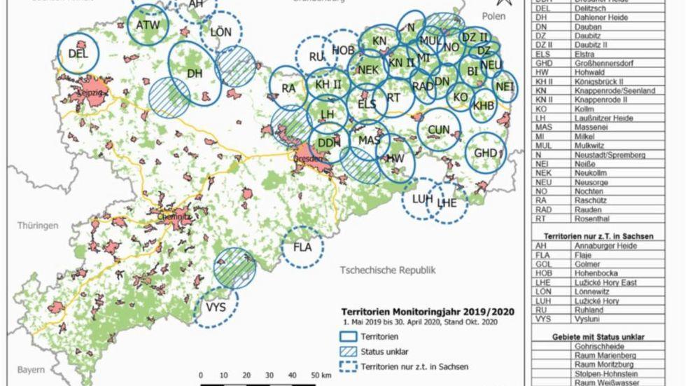 Wolfsterritorien in Sachsen. Grafik: Fachstelle Wolf